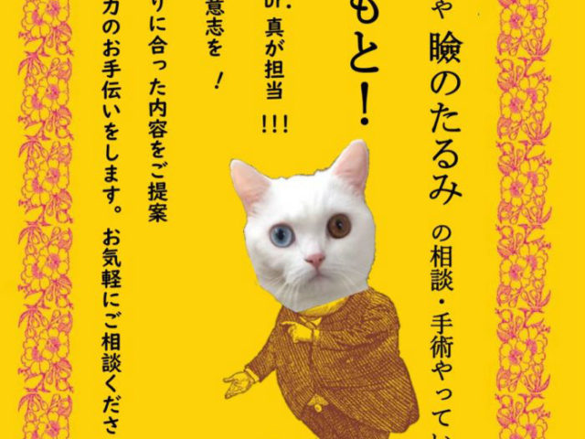 西田真医師診察日:二重や瞼のたるみのご相談も受け付けています。
